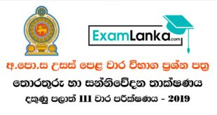 North Western Grade 13 2019 3rd Term Test ICT Essay Paper | Examlanka